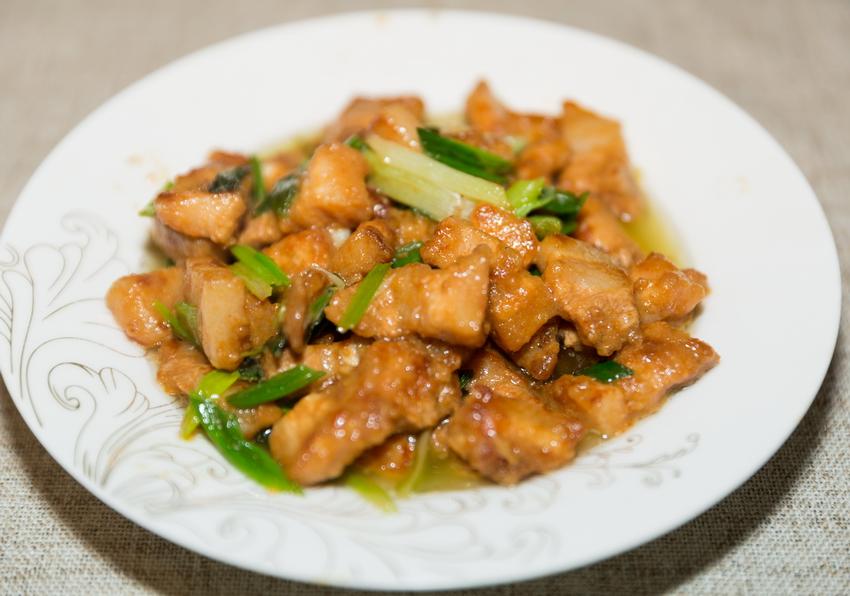 pork and green onion stir fry