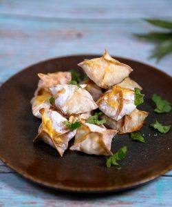 shrimp wonton recipe